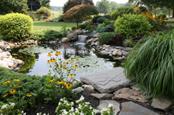 Water features in landscaping
